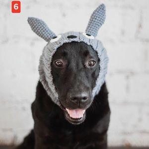 Dog hat hat  hand made 6$ when bundle